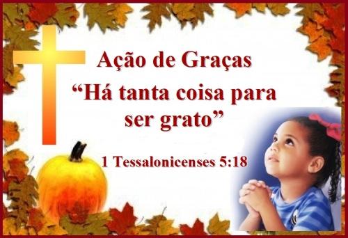 Gratidão 2013