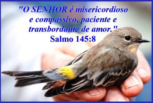 Salmo 145 vs 8 P