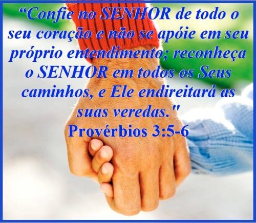Provérbios 3 vs 5-6
