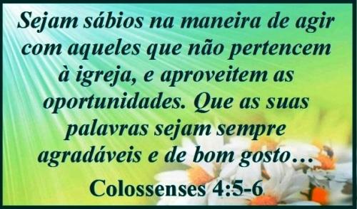 Colosense 4 (P)