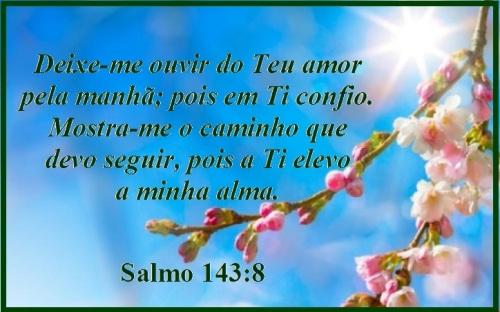 Salmo 143 vs 8 (P)