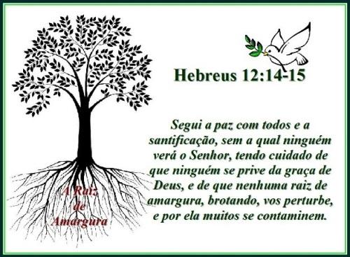 Hebreus 12 vs 14-15 A raiz de amargura