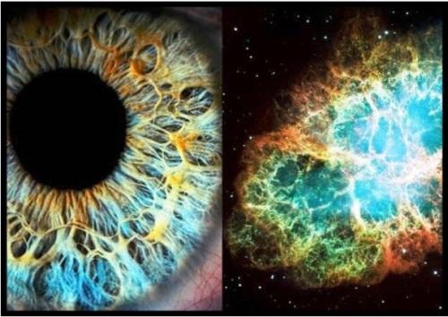 eye-vs-nebula
