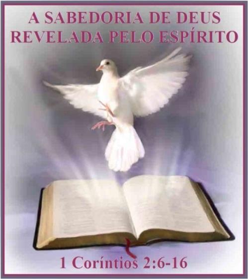 espiritu-santo-p